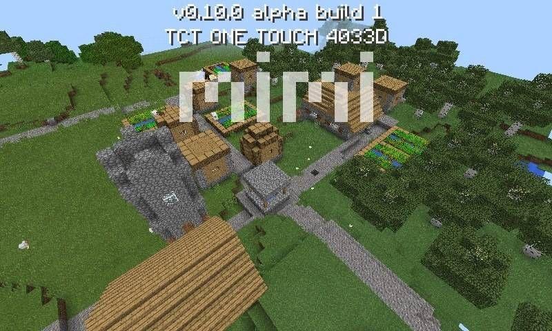 Сид Mimi - это биом с деревней