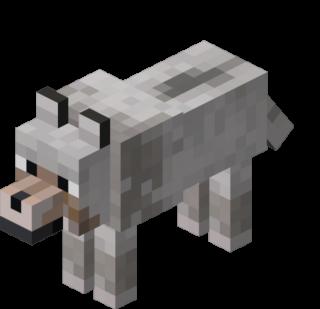 Дикий волк