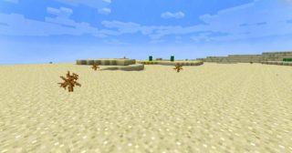 Жаркий и почти безжизненный биом пустыни в майнкрафте. Здесь можно найти много песка, кактусы, а также некоторые постройки