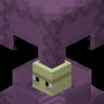 Шалкер - враждебный моб, обладающий формой полноразмерного блока и способный маскироваться под пурпурные блоки с помощью своего специфического окраса и той же формы. Может находится в двух различных состояниях - закрытом и открытом.